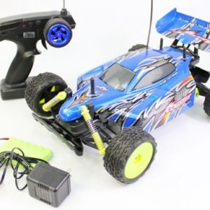 110-Scale-Off-Road-Extreme-Racing-Buggy-The-Rogster-Born-To-Race-Electric-RTR-RC-Buggy-Remote-Control-BUGGY-High-Quality-Colors-May-Vary-0
