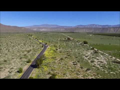 Drone Video Captures View Over California's Wildflower 'Super Bloom'