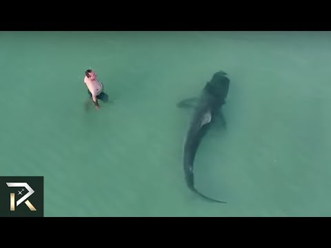 10 Creepiest Things Caught By Drones