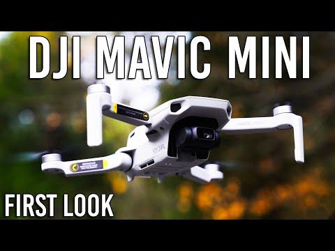 DJI Mavic Mini Drone – Specs & Footage | First Look