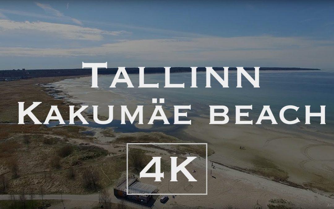 Kakumäe Beach.  Tallinn. 4K  –  Aerial drone footage